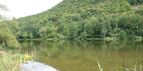Il fiume Nahe