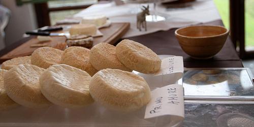 I formaggi di capra di Patrizia Vannelli