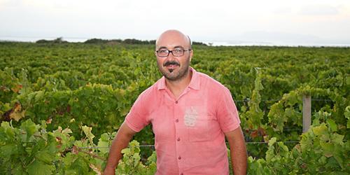 Nino Barraco in vigna