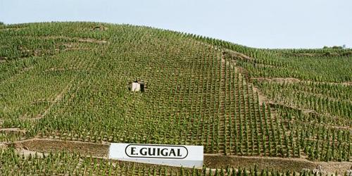 Guigal, un vigneto in Côte-Rôtie