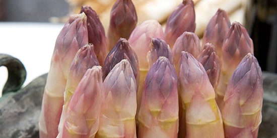 asparago-rosa-di-Mezzago