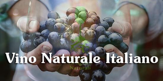 disciplinare del vino naturale italiano